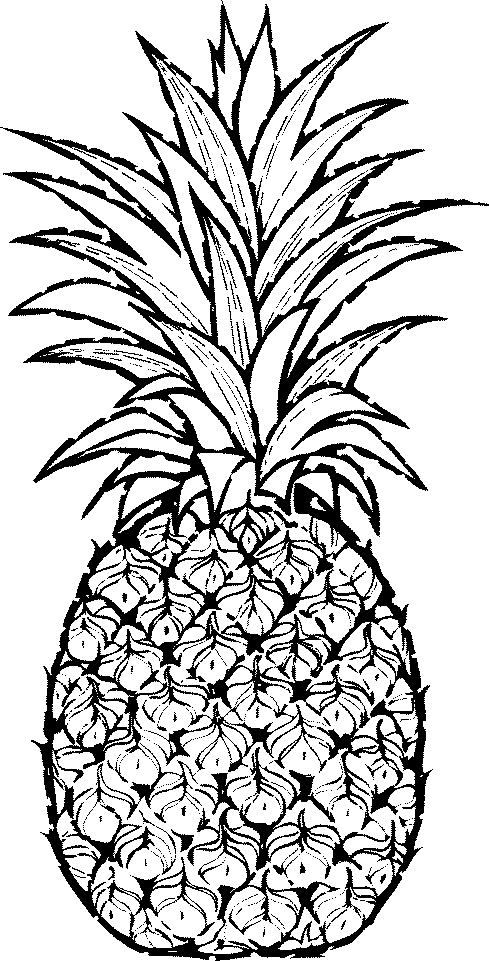Pineapple clipart Fruit clip art photo