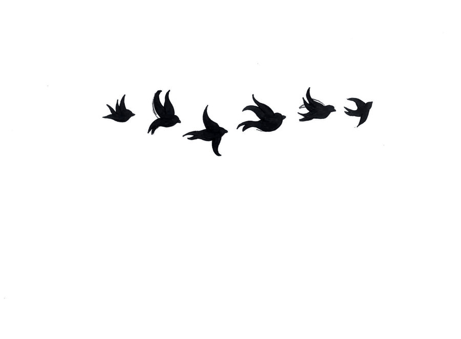 Birds Flying Black And White Images  Pictures - Becuo