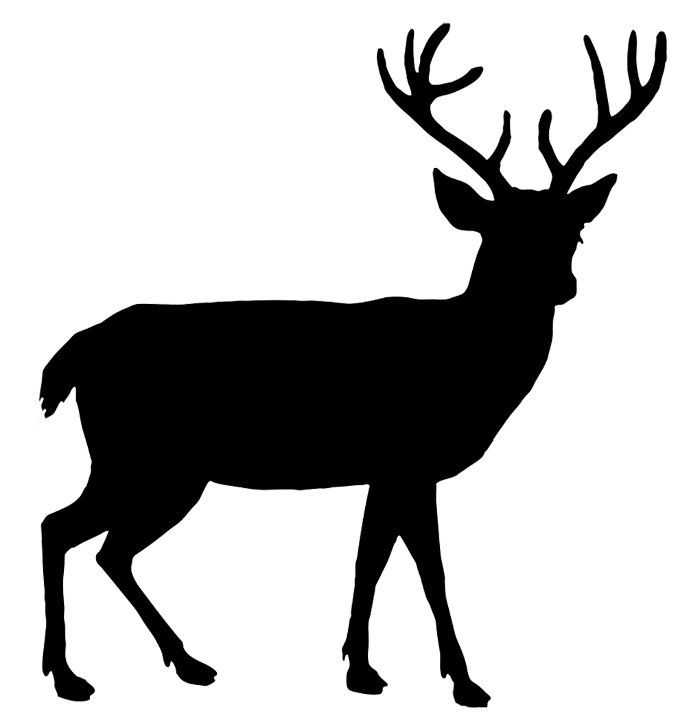 Buck Silhouette Png