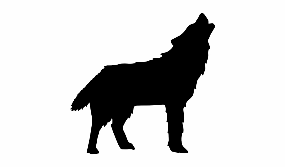 Wolf Alpaca Black And White Png