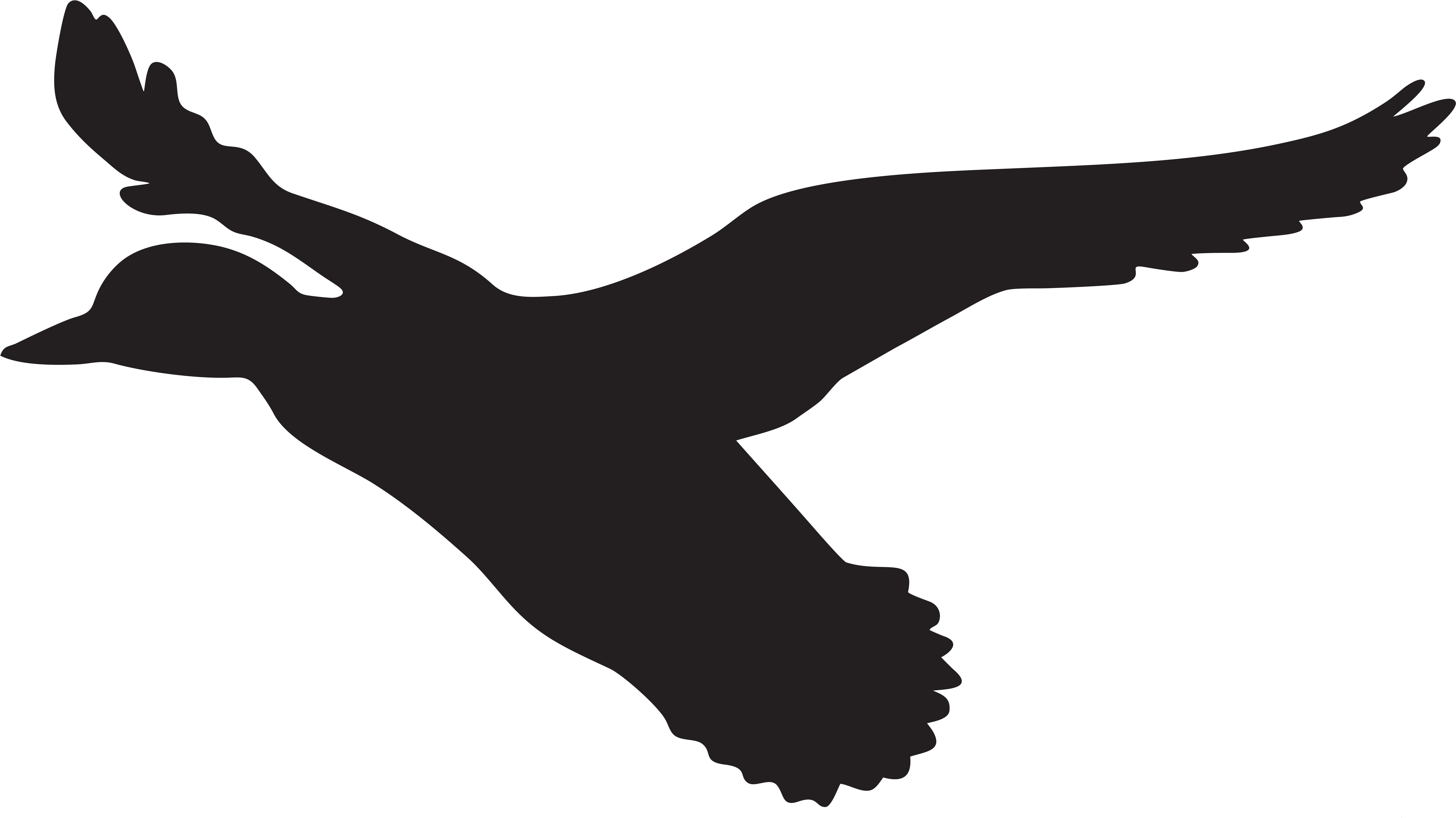 Flying Duck Silhouette Png Clip Art Imageu200b Gallery